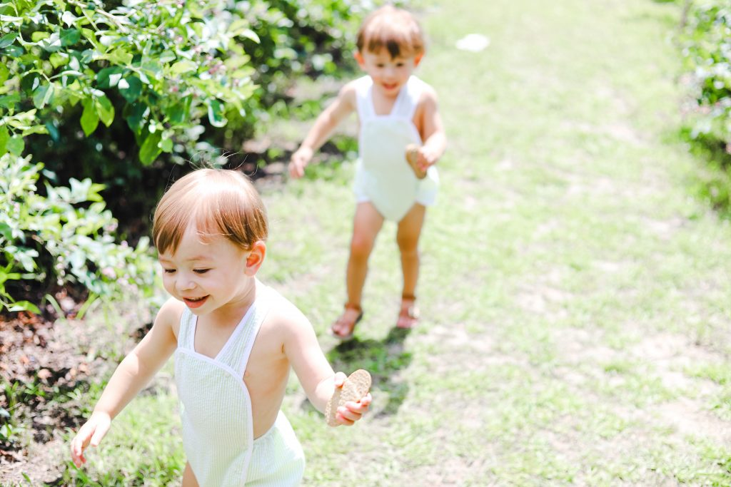 Twin toddlers at blase family blueberry farm in Rockwall Texas